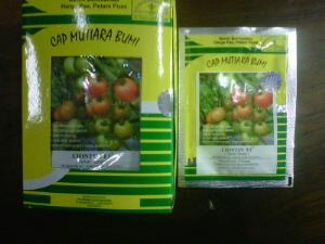 Bibit tomat LIONTIN F1